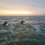Het IJsselmeer over zwemmen: verslag van de overtocht